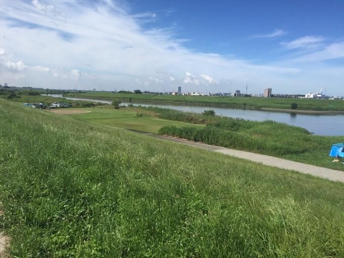 江戸川河川敷で見つけた芝生
