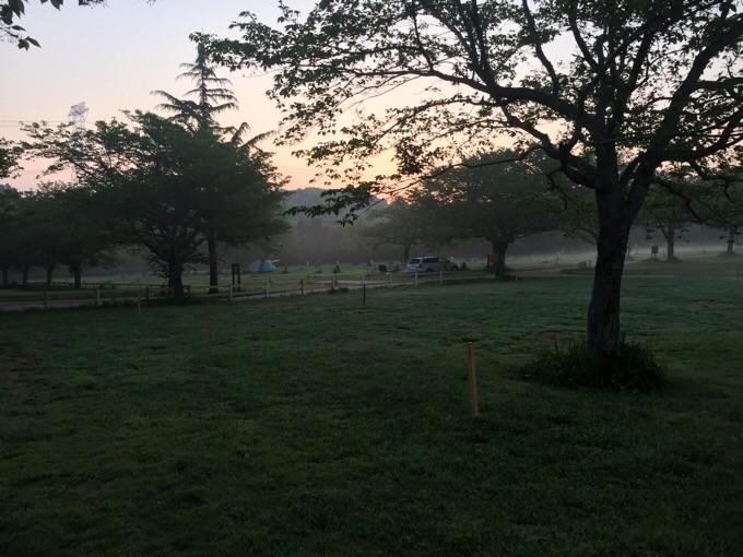 ゆめ牧場の朝