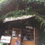真夏の柿山田で川キャンプ!ザリガニ釣りは熱中症に要注意!