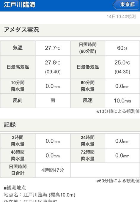 江戸川河川敷は風速10メートル