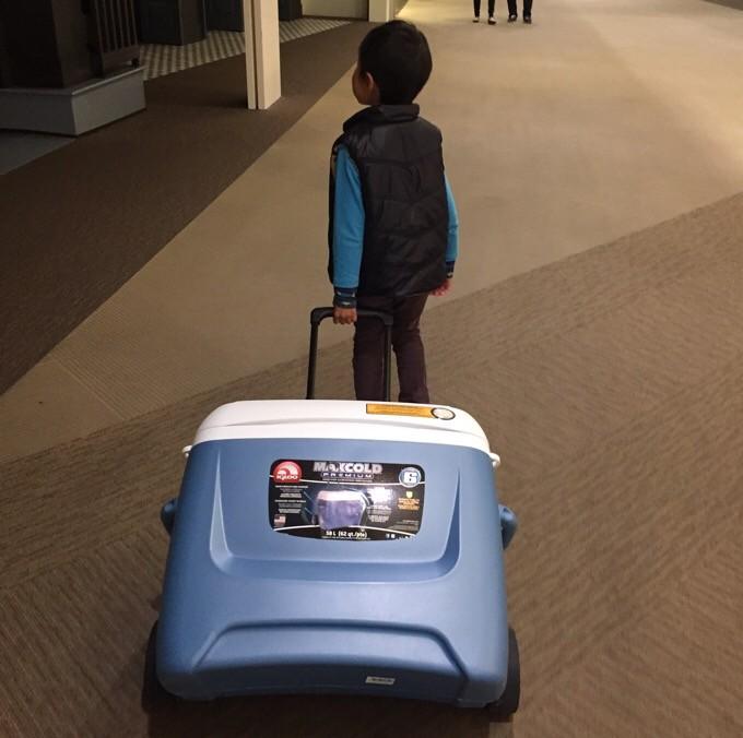 クーラーボックスを引く幼稚園児