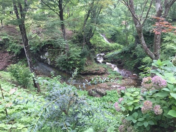 小川が流れ自然いっぱい
