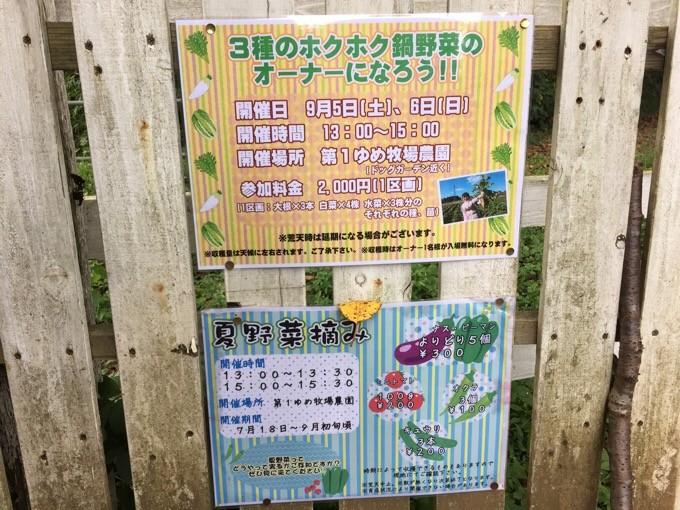 夏野菜収穫&冬野菜種まき