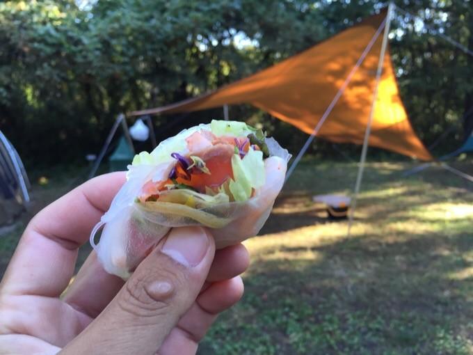 すがすがしいキャンプ場の朝