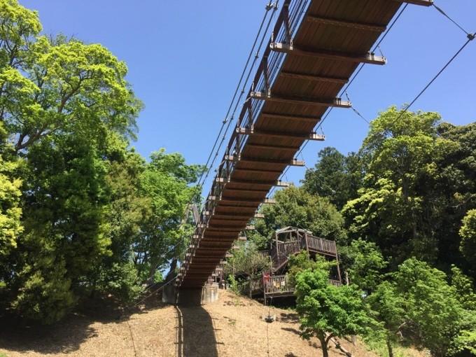 坂田ヶ池総合公園の吊り橋