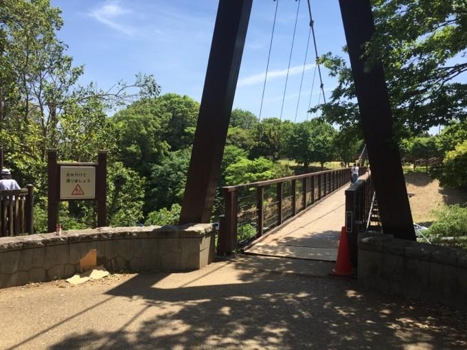 坂田ヶ池の吊り橋「りゅうのみち」