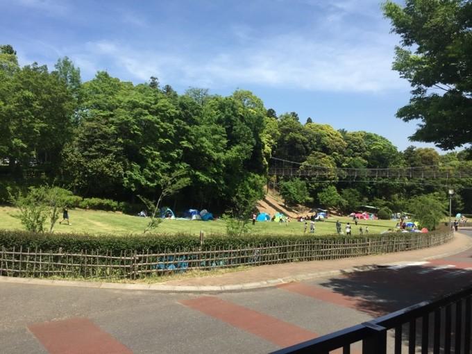 坂田ヶ池総合公園の管理棟から見た斜面広場