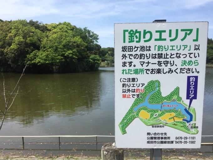 坂田ヶ池では釣りも楽しめる