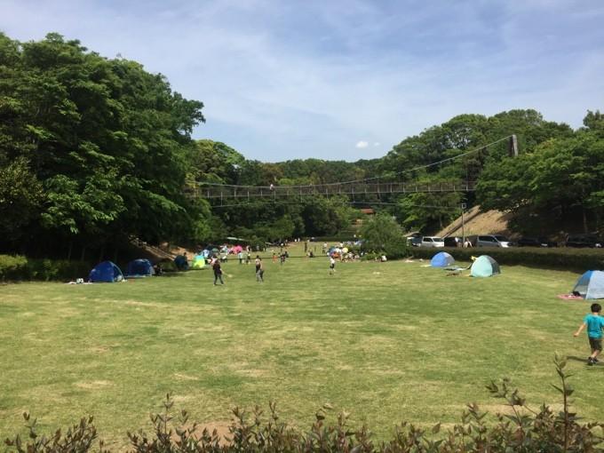 坂田ヶ池総合公園の斜面広場