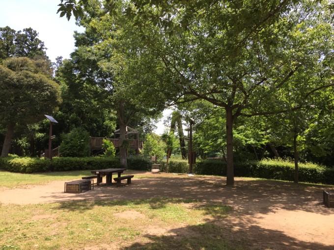 坂田ヶ池総合公園キャンプ場の木陰