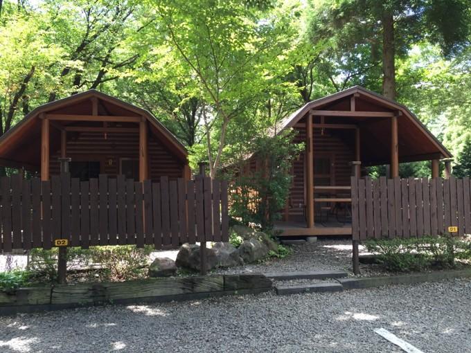 真夏のキャンプアンドキャビンズは緑がいっぱい