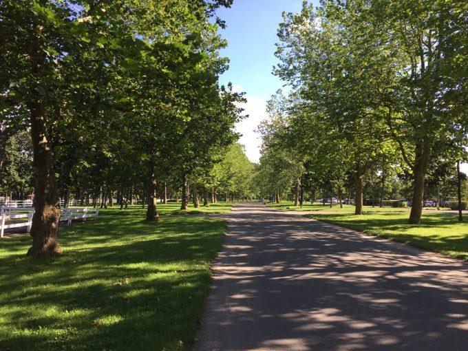 ノーザンホースパークの園内
