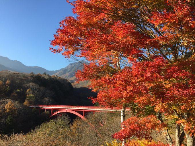 晩秋の赤い橋と紅葉