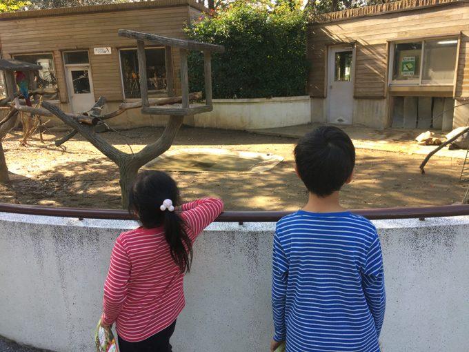 千葉市動物公園でまったり