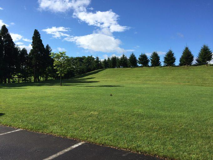オートリゾート八雲はフリーサイトも美しい芝生