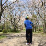 三度目の正直ならず!見頃過ぎ去り桜舞い散るお花見キャンプ