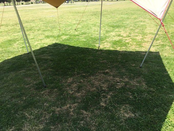 タトンカ張りすると6角形の影ができる