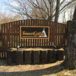 最高の外遊び日和!ゴールデンウィークは軽井沢&草津で温泉キャンプ