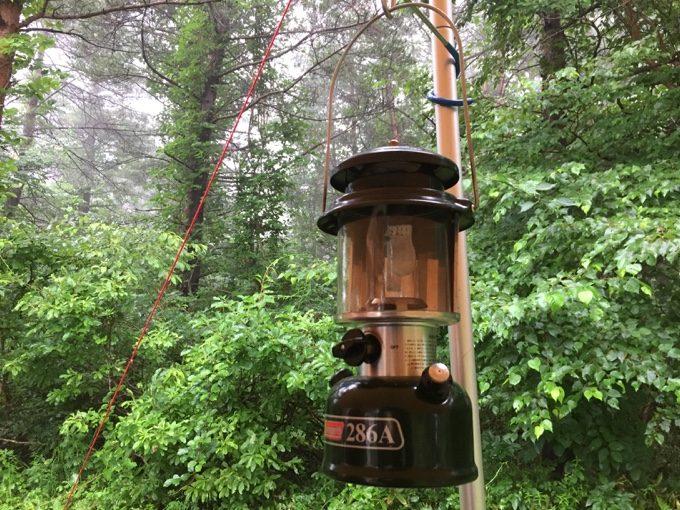 霧に包まれた森とワンマントルランタン