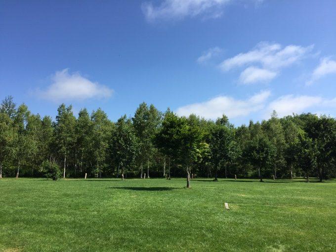 スノーピーク十勝ポロシリキャンプフィールドの美しい芝生