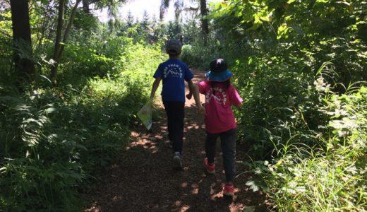 子育てに、野遊びを。こどもと楽しむキャンプランキング2017