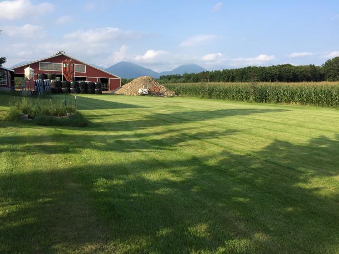 カントリーファーマーズ藤田牧場の広大なフリーサイト