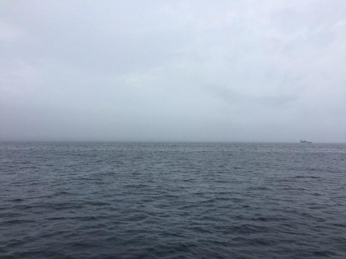 羅臼港を出航し40分ほどで到着