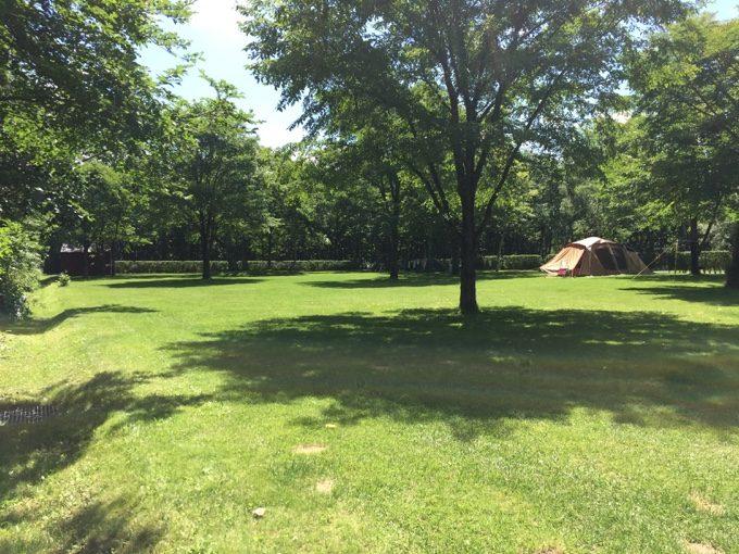 虹別オートキャンプ場のフリーサイトは木陰あり