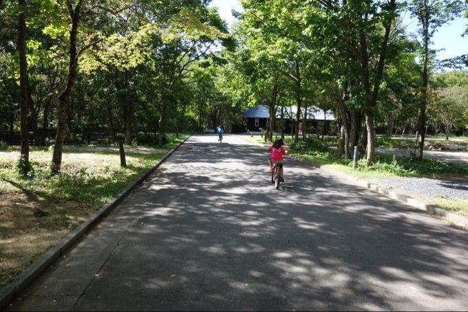 自転車を借りてレジーナの森を散策