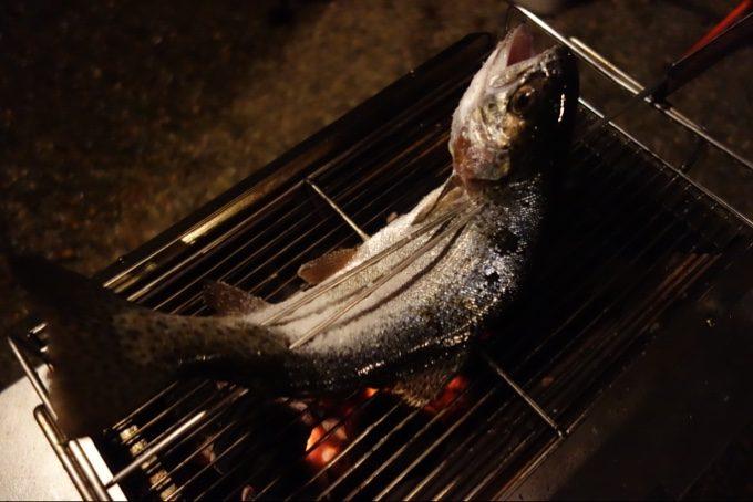 子供が釣り上げたニジマスをユニセラで塩焼きに