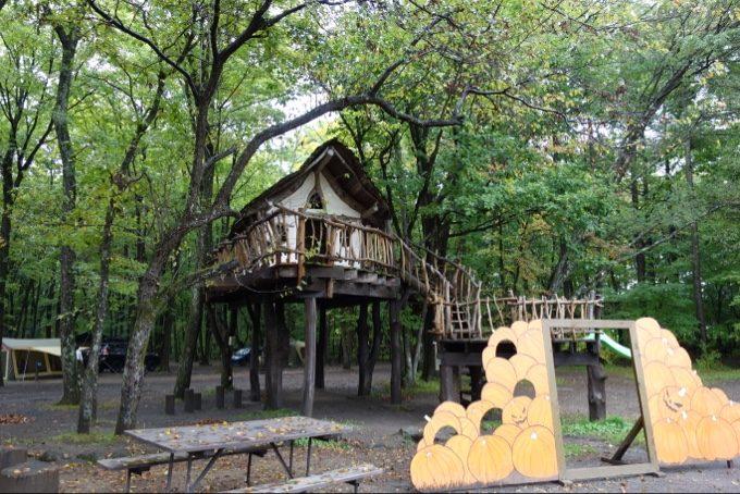 北軽井沢スウィートグラスのツリーハウス
