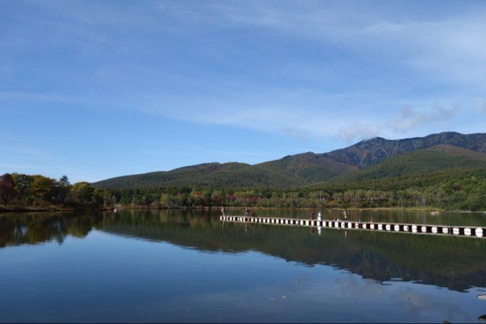 バラギ湖にクマ出没のため桟橋が使えず
