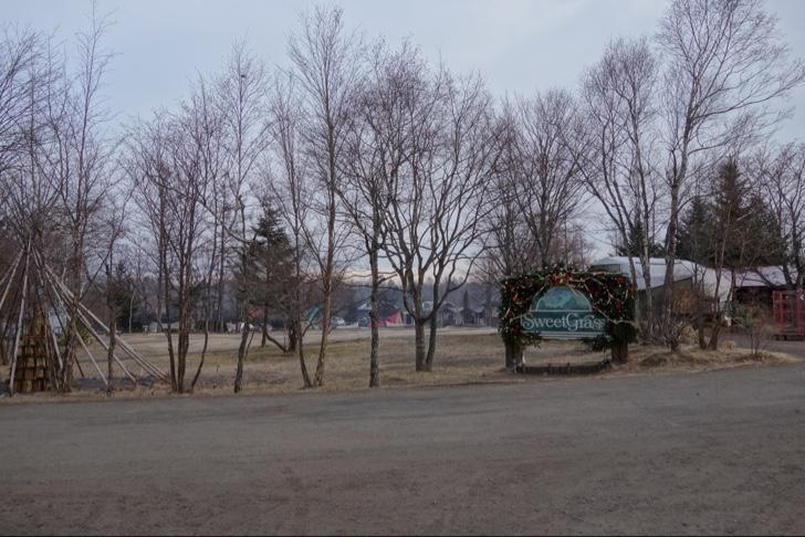 雪が積もる前の北軽井沢スウィートグラスの冬