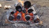PICA富士西湖で丸太を燃やす焚き火フェスに参加
