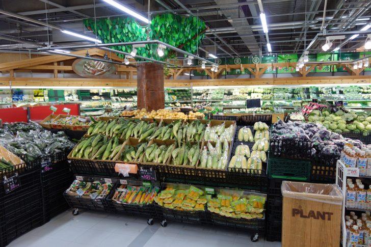 PLANT-4聖籠店で食材を調達