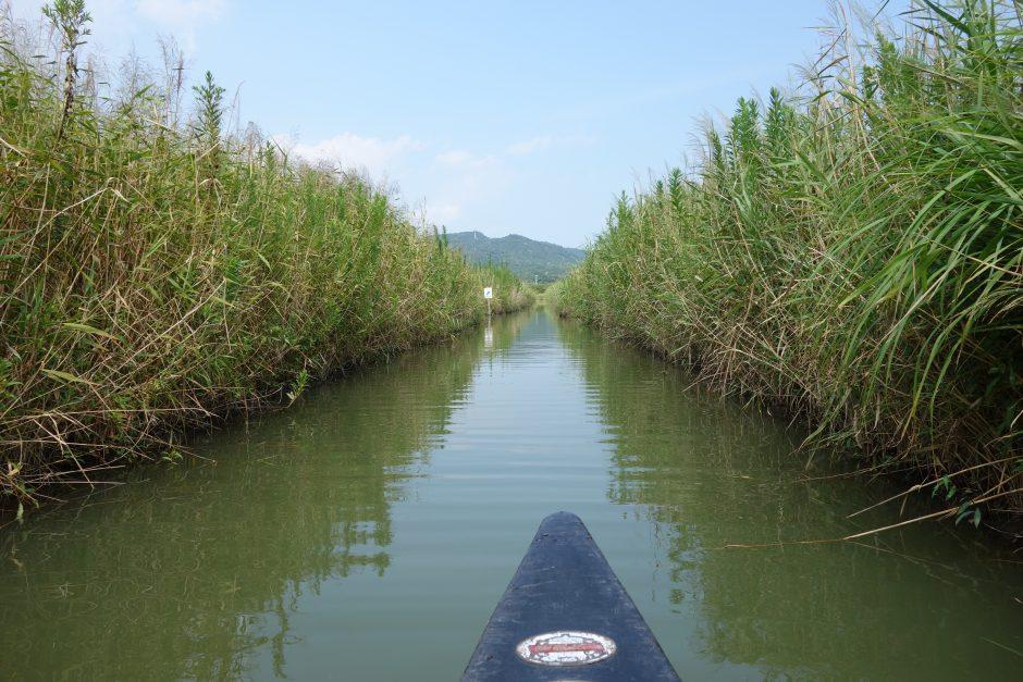 伊勢志摩エバーグレイズのカナディアンカヌーでラグーン迷路を巡る旅