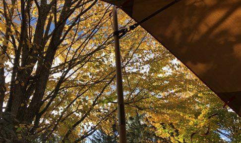 秋のスウィートグラスでハロウィンキャンプ
