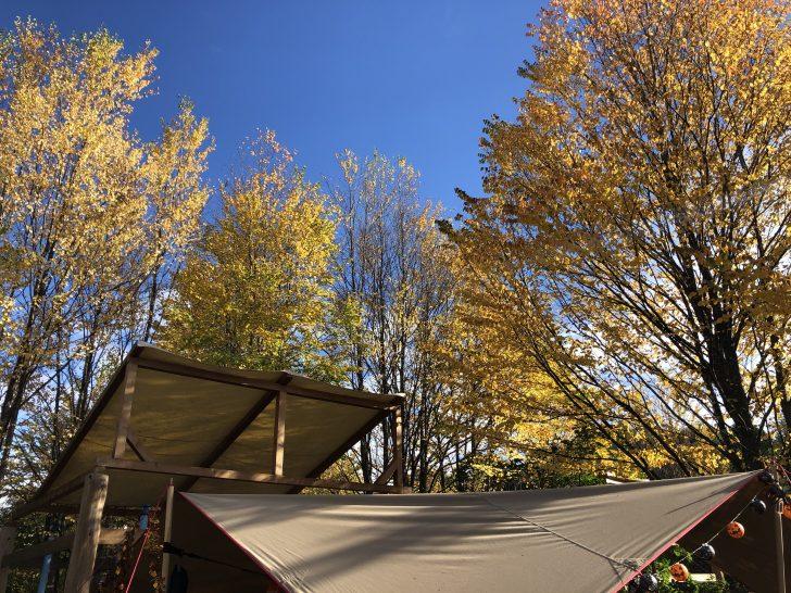 北軽井沢スウィートグラスの紅葉シーズン