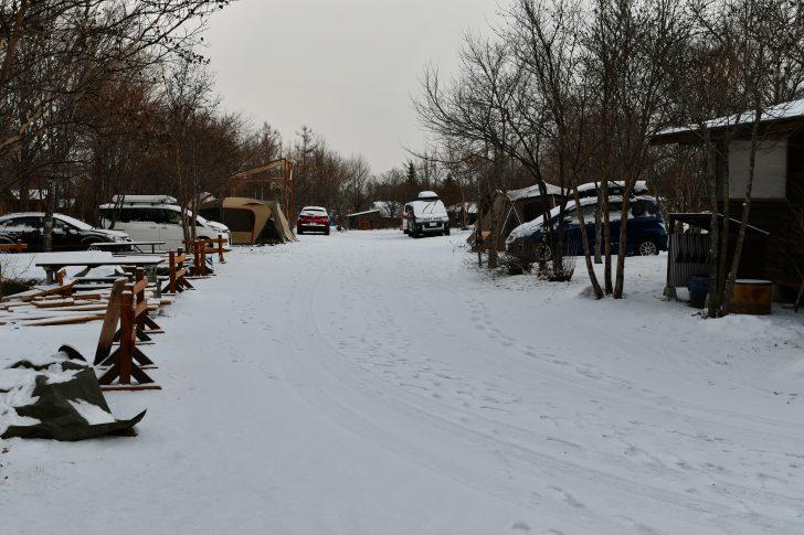 雪の積もったホワイトフェスタ2019