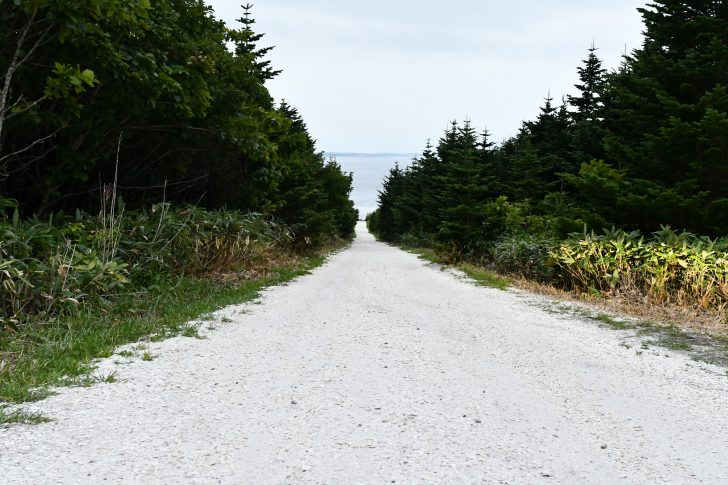 宗谷岬近くの貝殻でできた白い道