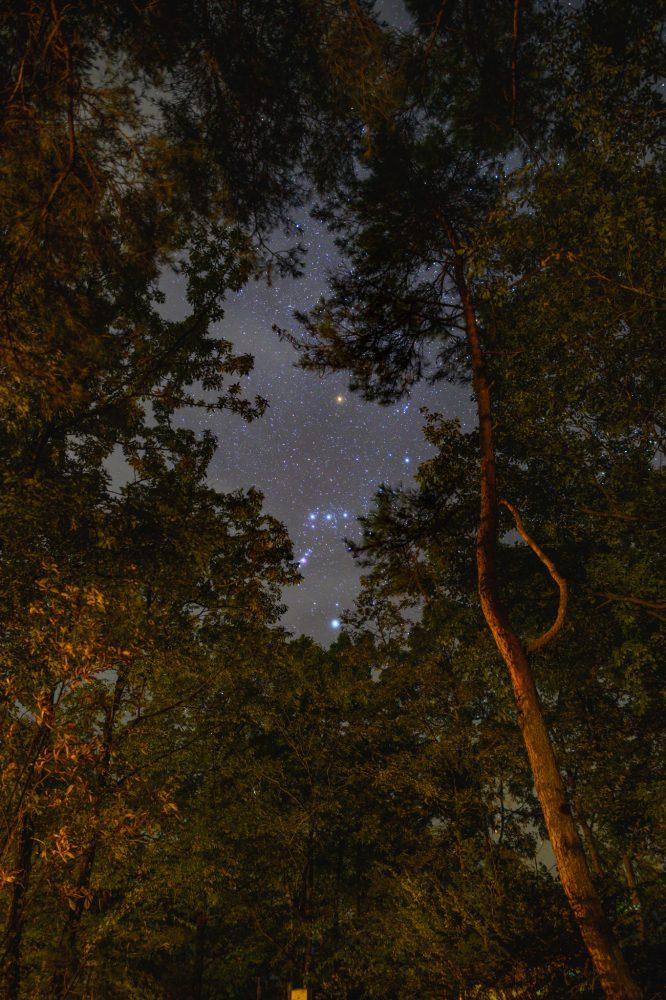 南アルプス三景園から見上げるオリオン座
