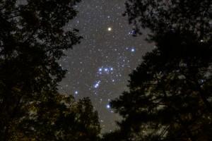 南アルプス三景園2泊目の夜に撮影したオリオン座