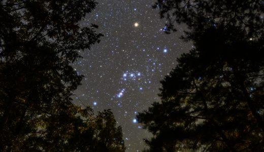 木々に囲まれた林間キャンプ場から見上げる晩秋のオリオン