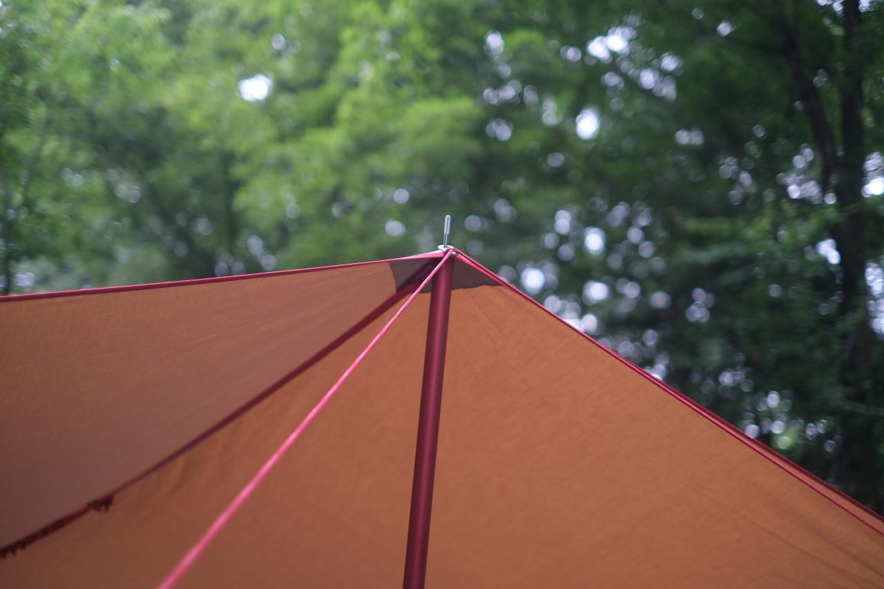 camp24白州フィールドは緑に包まれた林間キャンプ場